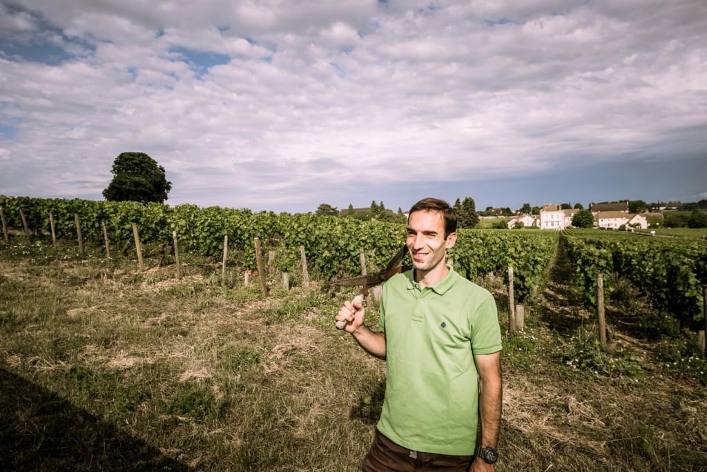 img1-benoit-eschard-vigne